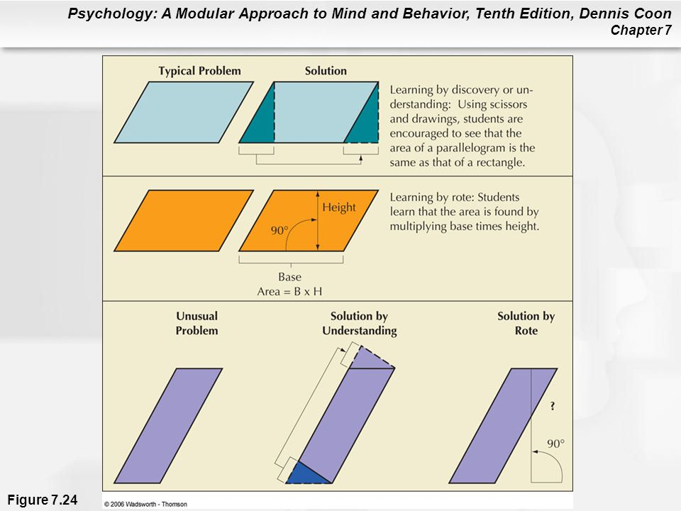 Psychology: A Modular Approach to Mind and Behavior, Tenth Edition, Dennis Coon Chapter 7 Figure 7.24