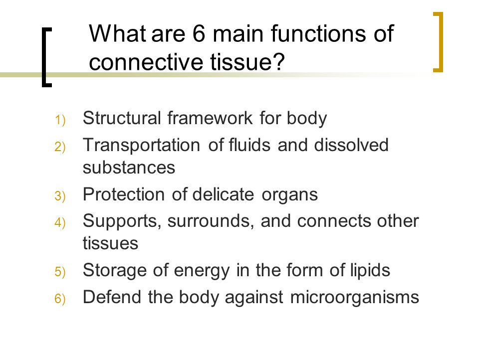 What are 6 main functions of connective tissue? 1) Structural framework for body 2) Transportation of fluids and dissolved substances 3) Protection of