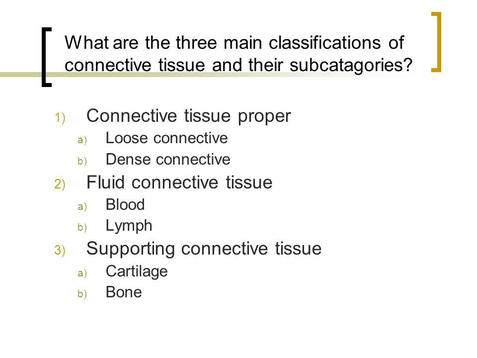 What are the three main classifications of connective tissue and their subcatagories.