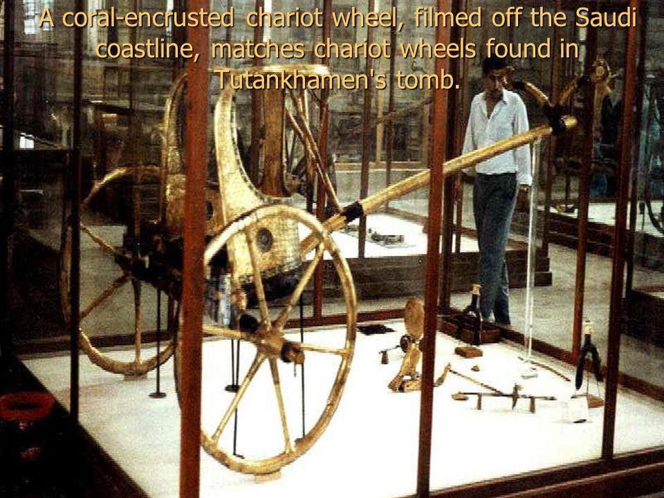Since 1987, Ron Wyatt found three four- spoke gilded chariot wheels.