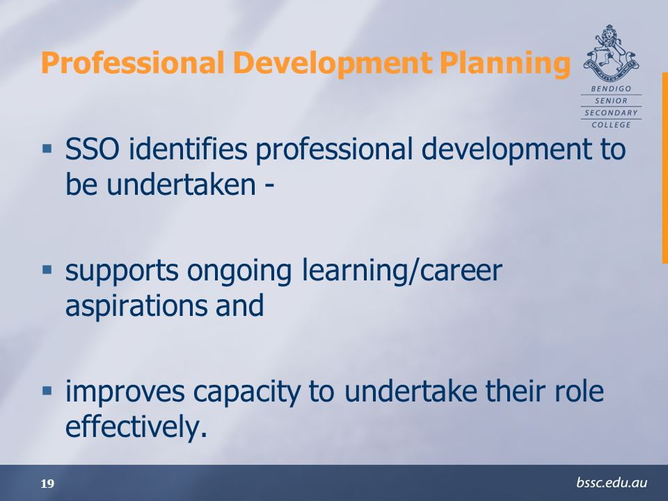 19 Professional Development Planning SSO identifies professional development to be undertaken - supports ongoing learning/career aspirations and improves capacity to undertake their role effectively.