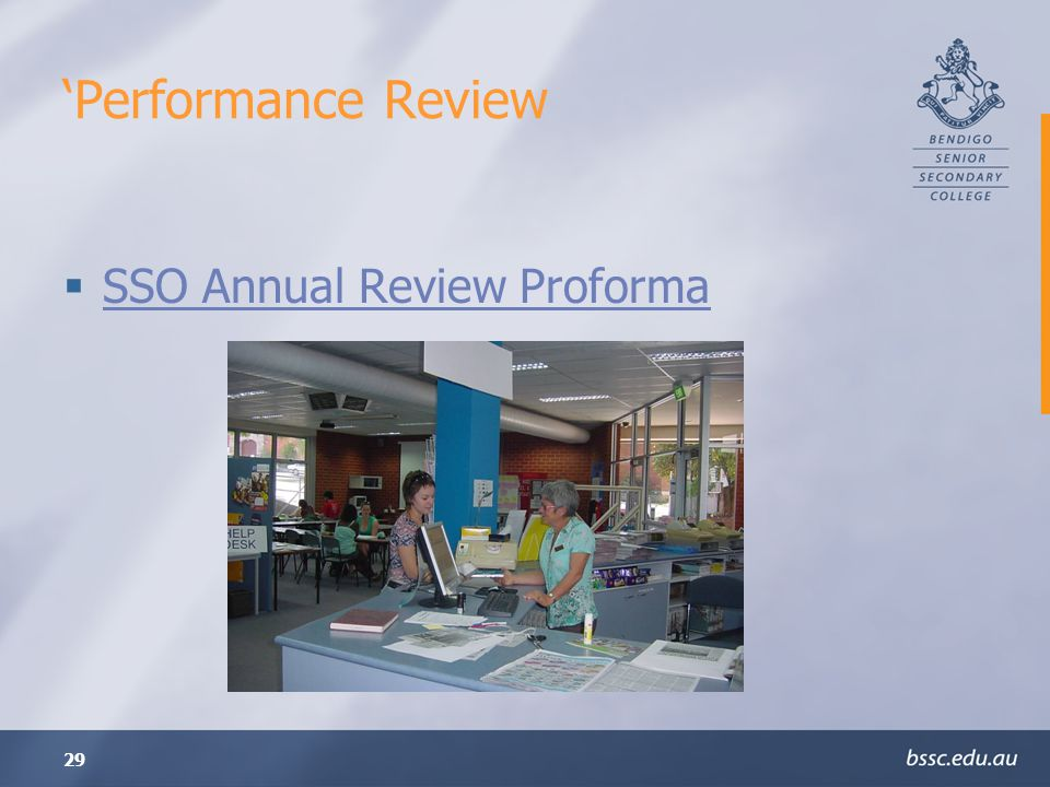29 Performance Review SSO Annual Review Proforma