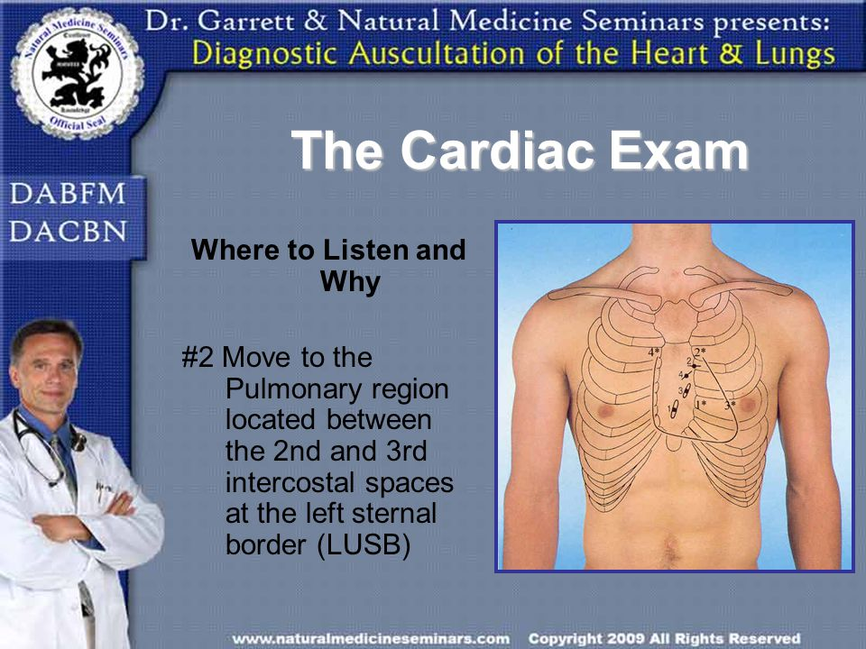 The Cardiac Exam Where to Listen and Why #2 Move to the Pulmonary region located between the 2nd and 3rd intercostal spaces at the left sternal border