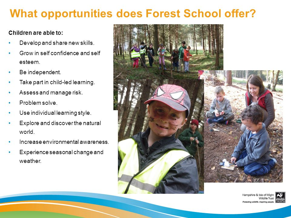 What opportunities does Forest School offer.Children are able to: Develop and share new skills.