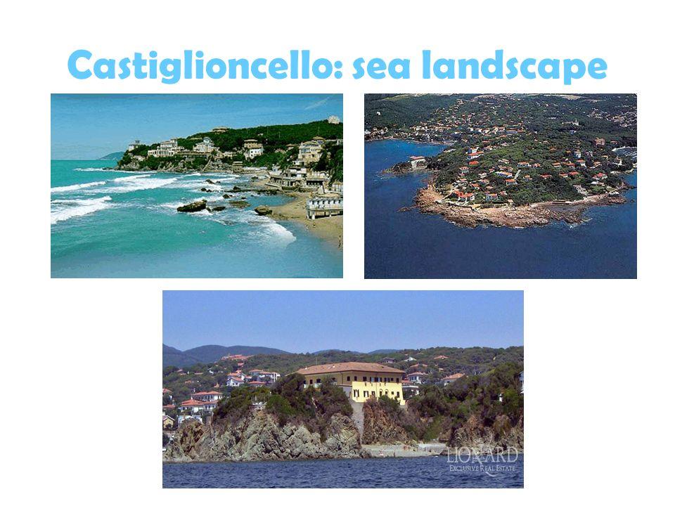 Castiglioncello: sea landscape