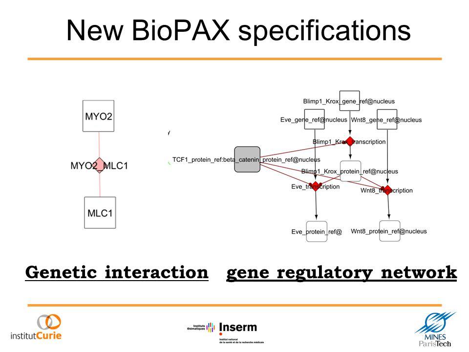 New BioPAX specifications gene regulatory networkGenetic interaction