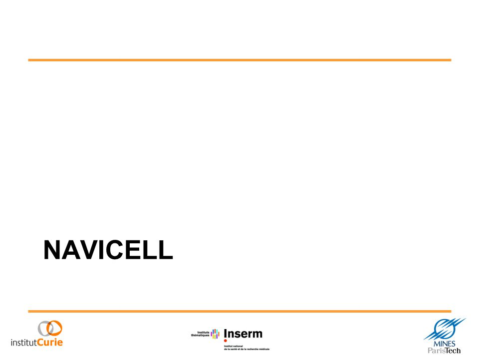What is NaviCell Web based environment for navigation, curation and maintenance of biochemical reaction networks
