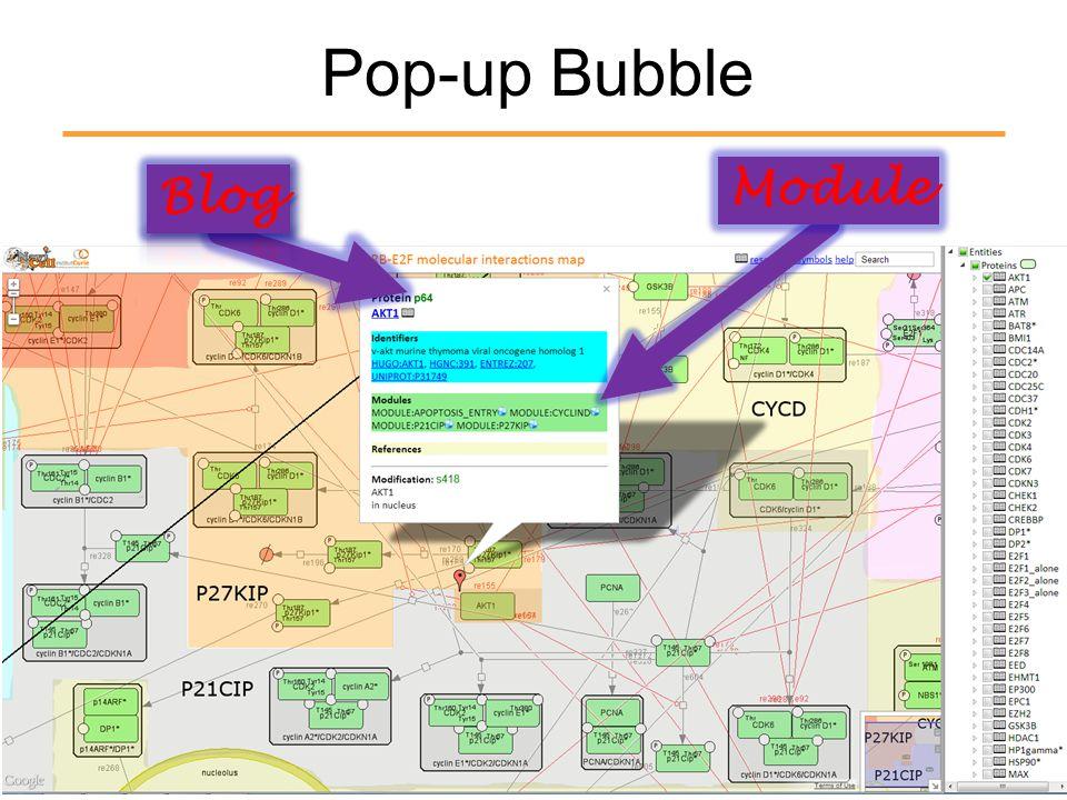 Pop-up Bubble Module