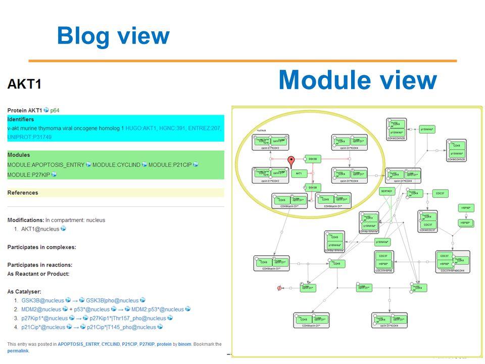 Blog view Module view