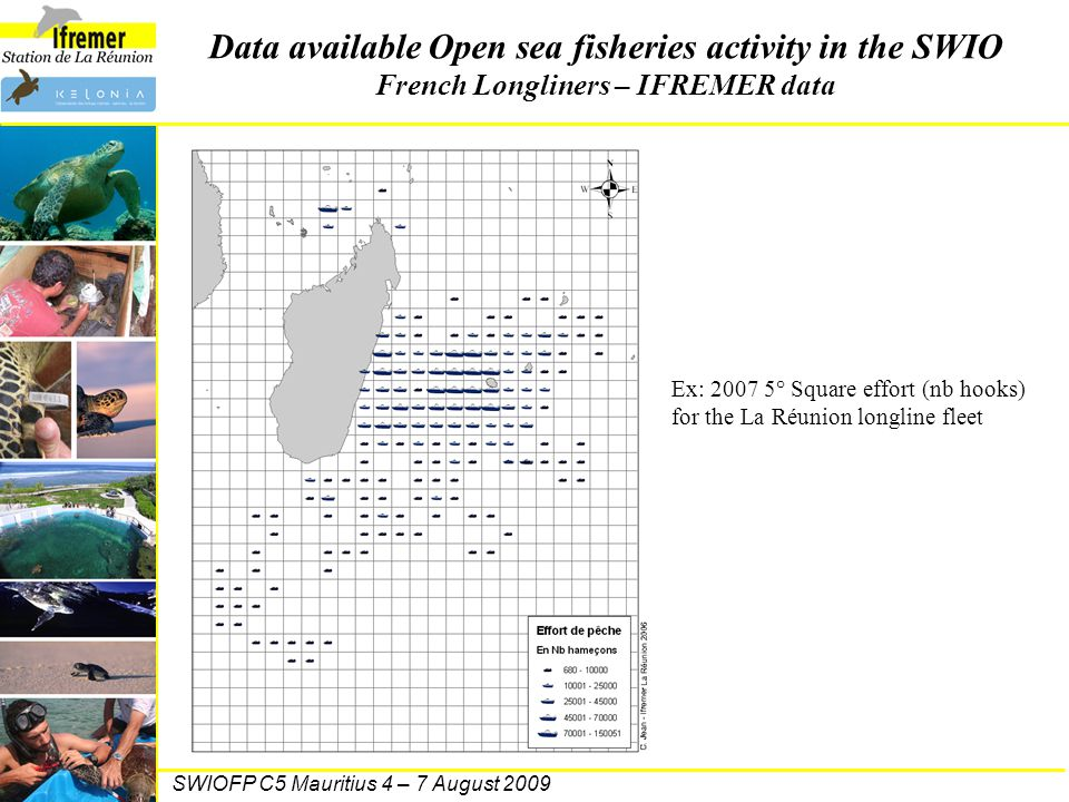 SWIOFP C5 Mauritius 4 – 7 August 2009 Data available Open sea fisheries activity in the SWIO French Longliners – IFREMER data Ex: 2007 5° Square effor