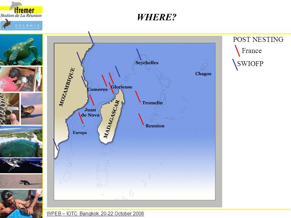 WPEB – IOTC Bangkok, 20-22 October 2008 WHERE? POST NESTING France SWIOFP