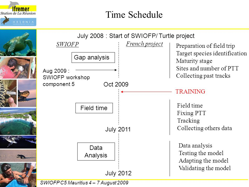 Time Schedule July 2008 : Start of SWIOFP/ Turtle project Oct 2009 July 2011 July 2012 Gap analysis Aug 2009 : SWIOFP workshop component 5 Field time