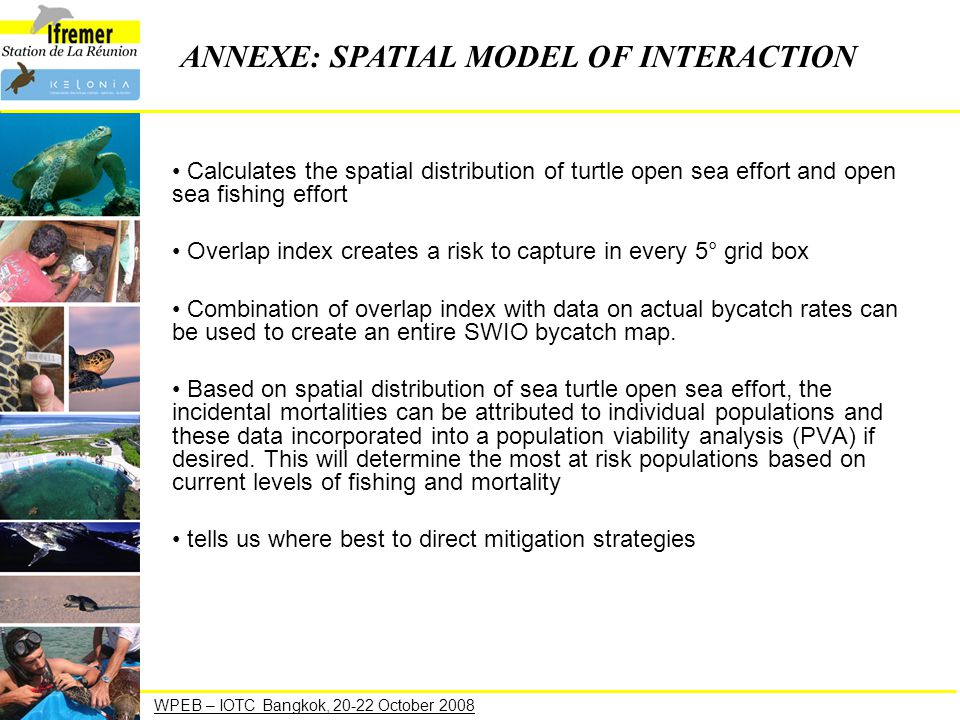 Calculates the spatial distribution of turtle open sea effort and open sea fishing effort Overlap index creates a risk to capture in every 5° grid box