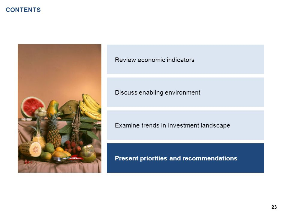CONTENTS 23 Review economic indicators Discuss enabling environment Examine trends in investment landscape Present priorities and recommendations