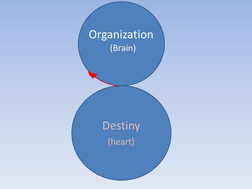 Organization (Brain) Destiny (heart)