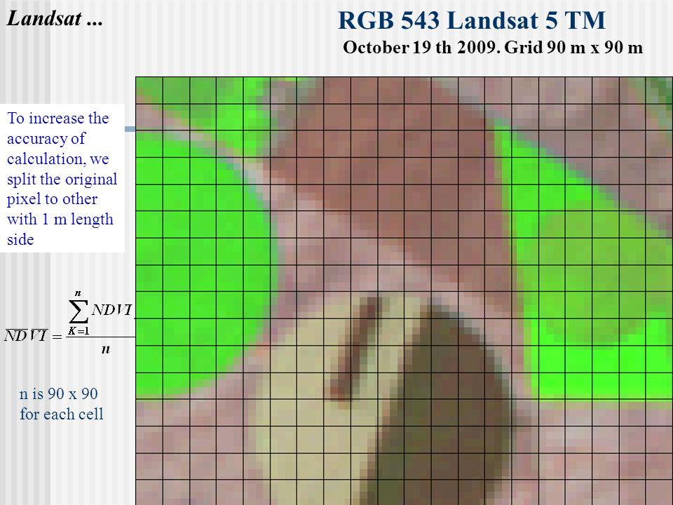 RGB 543 Landsat 5 TM October 19 th 2009. Grid 90 m x 90 m Landsat...