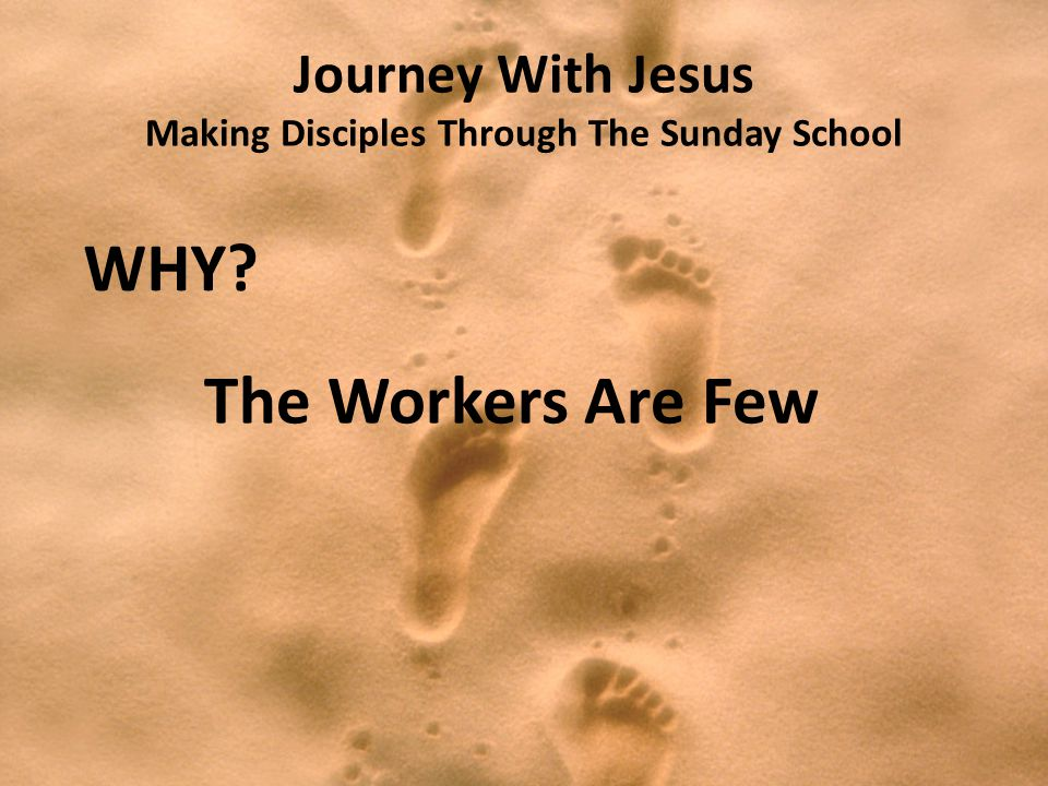 Journey With Jesus Making Disciples Through The Sunday School WHY? The Workers Are Few