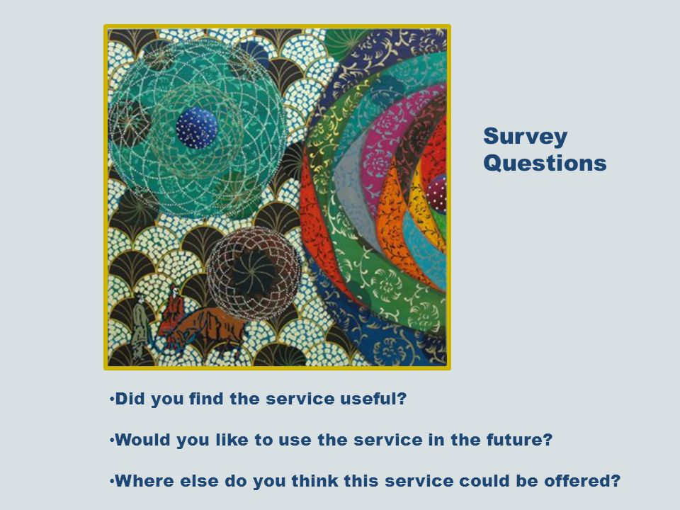 Did you find the service useful. Would you like to use the service in the future.