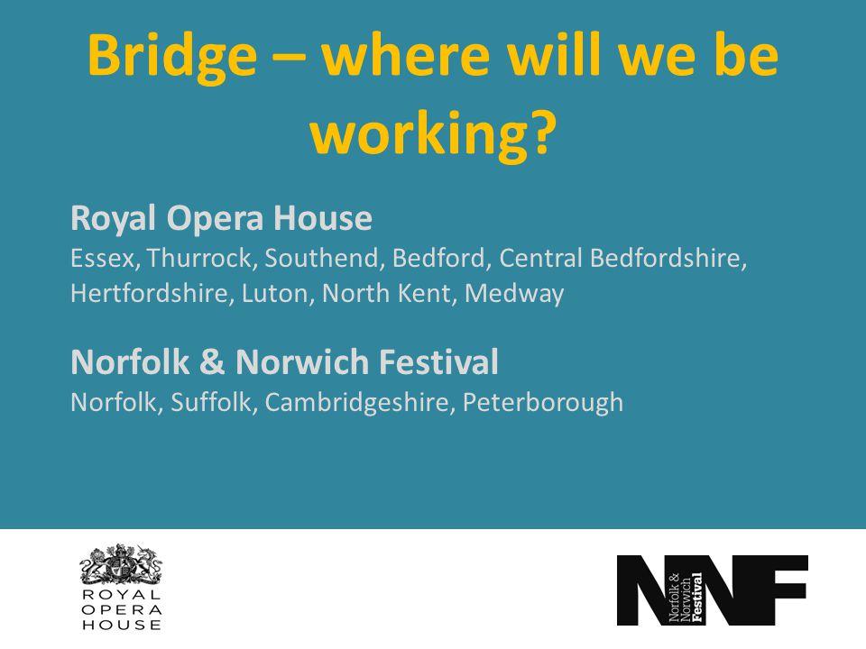 Bridge – where will we be working.