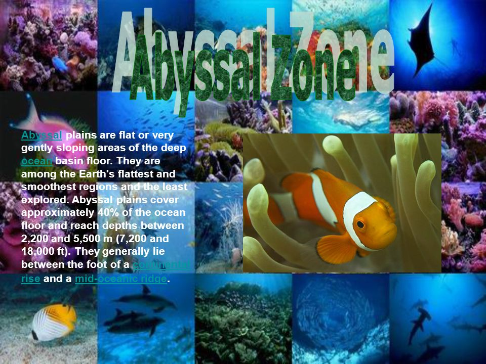 AbyssalAbyssal plains are flat or very gently sloping areas of the deep ocean basin floor. They are among the Earth's flattest and smoothest regions a