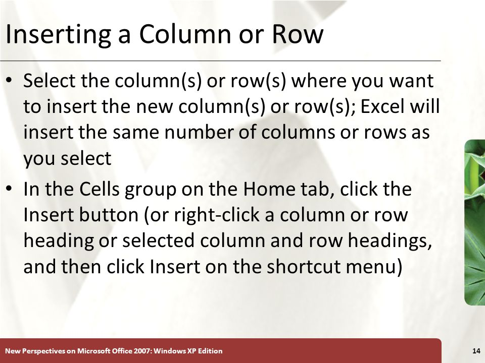 XP New Perspectives on Microsoft Office 2007: Windows XP Edition14 Inserting a Column or Row Select the column(s) or row(s) where you want to insert t