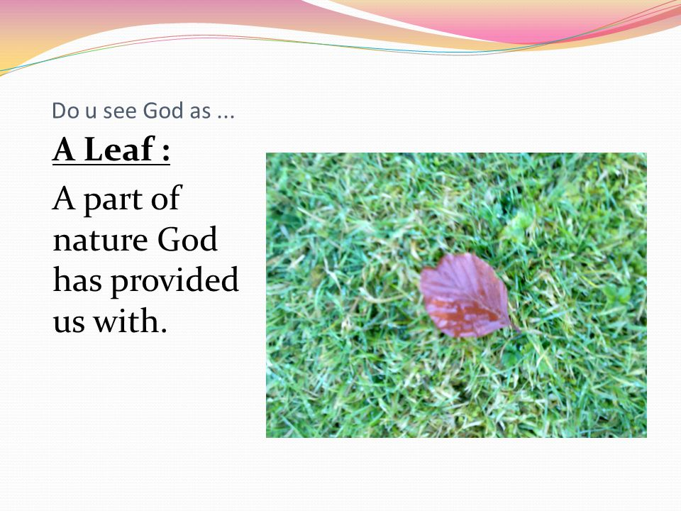 Do u see God as... A Leaf : A part of nature God has provided us with.