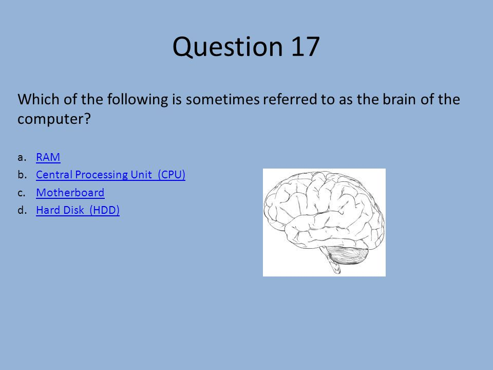 Question 17 Which of the following is sometimes referred to as the brain of the computer.