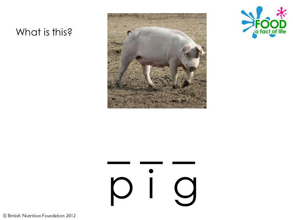 © British Nutrition Foundation 2012 What is this _ _ _ pig