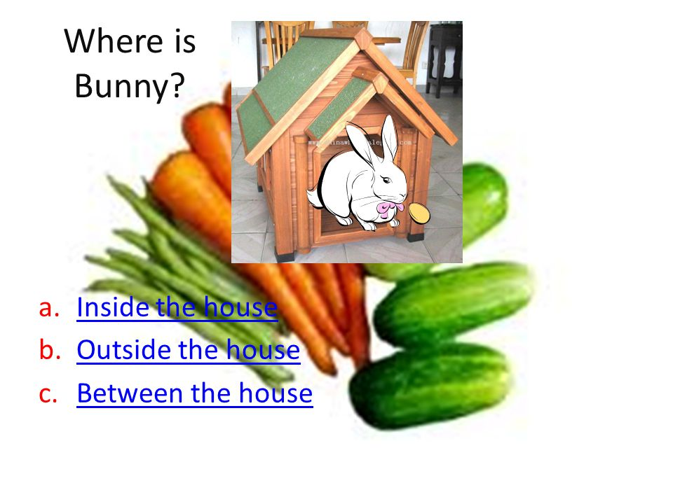 Where is Bunny? a.Inside the houseInside the house b.Outside the houseOutside the house c.Between the houseBetween the house