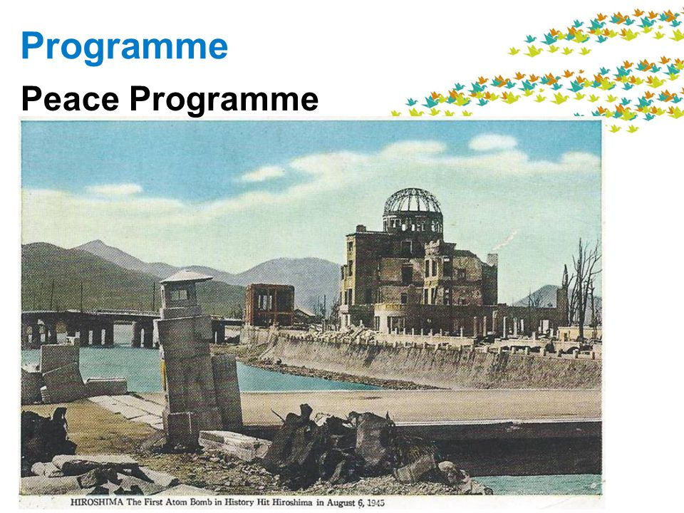 Programme Peace Programme