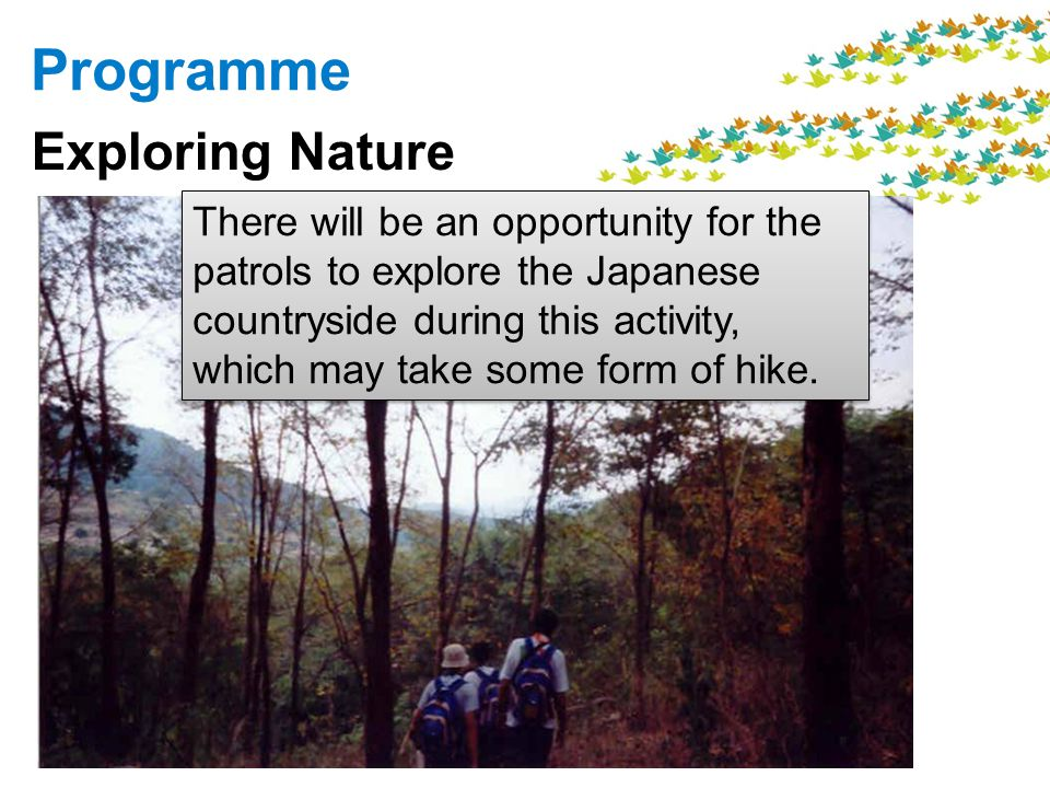 Programme Exploring Nature There will be an opportunity for the patrols to explore the Japanese countryside during this activity, which may take some form of hike.