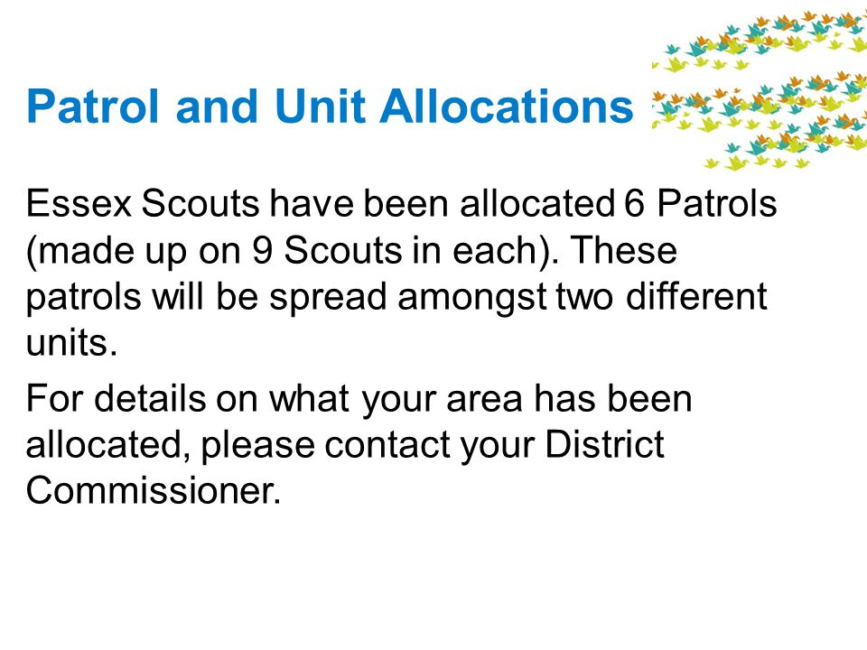 Patrol and Unit Allocations Essex Scouts have been allocated 6 Patrols (made up on 9 Scouts in each).