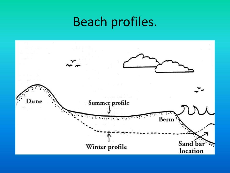 Beach profiles.