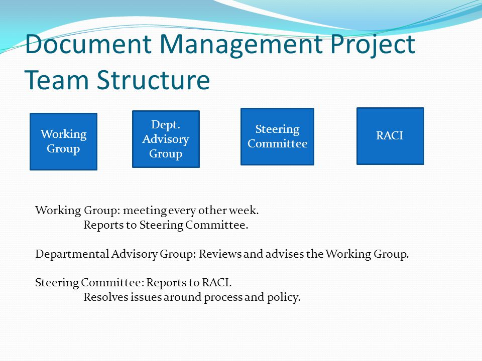 Document Management Project Team Structure Working Group Steering Committee Dept. Advisory Group RACI Working Group: meeting every other week. Reports