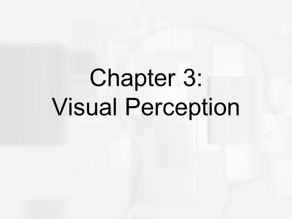 Cognitive Psychology, Fifth Edition, Robert J. Sternberg Chapter 3 Chapter 3: Visual Perception