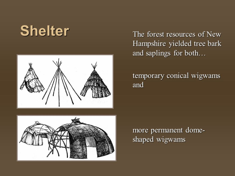 Shelter The forest resources of New Hampshire yielded tree bark and saplings for both… temporary conical wigwams and more permanent dome- shaped wigwa