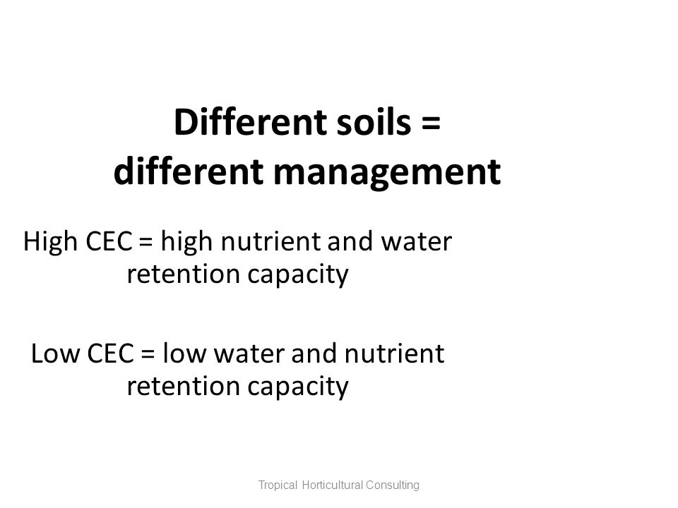 Tropical Horticultural Consulting Different soils = different management High CEC = high nutrient and water retention capacity Low CEC = low water and