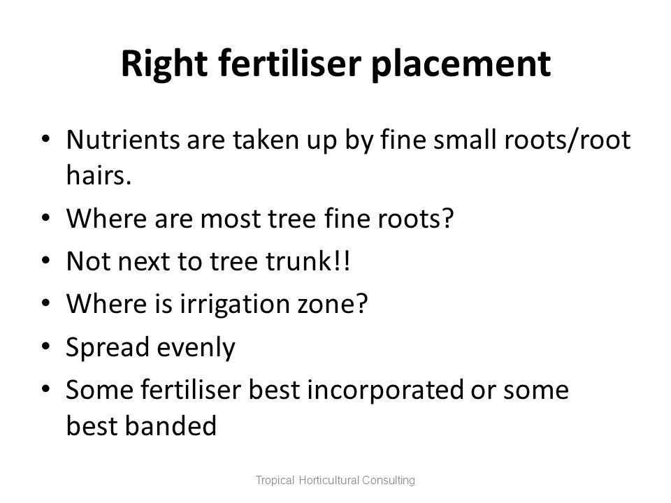 Right fertiliser placement Nutrients are taken up by fine small roots/root hairs. Where are most tree fine roots? Not next to tree trunk!! Where is ir