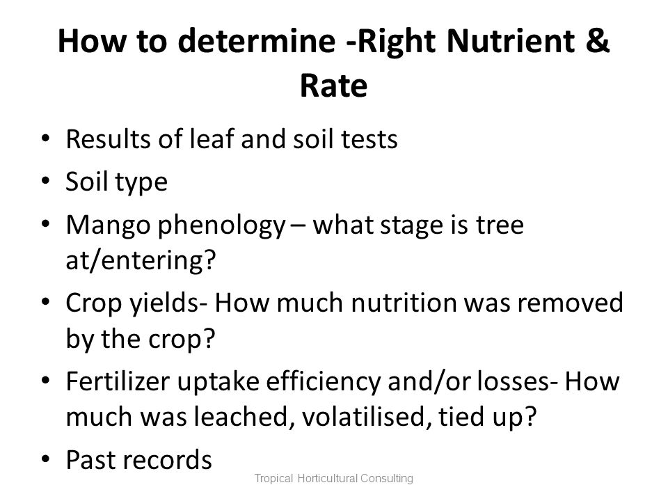 How to determine -Right Nutrient & Rate Results of leaf and soil tests Soil type Mango phenology – what stage is tree at/entering? Crop yields- How mu
