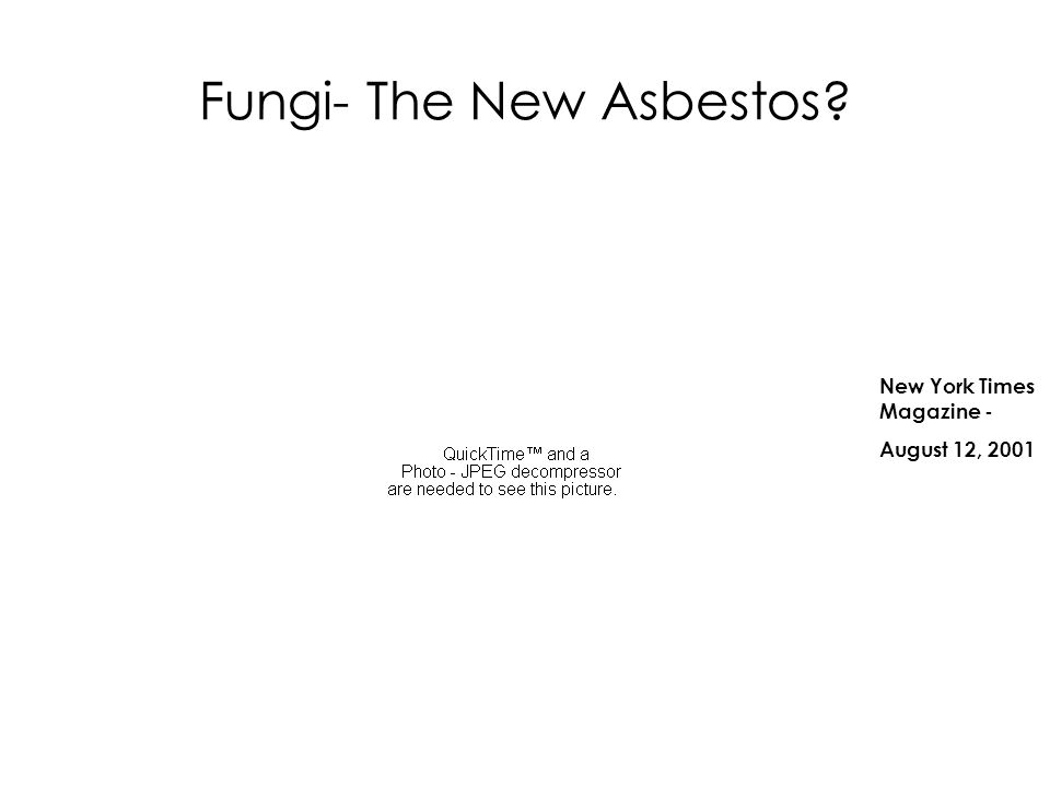 Fungi- The New Asbestos? New York Times Magazine - August 12, 2001