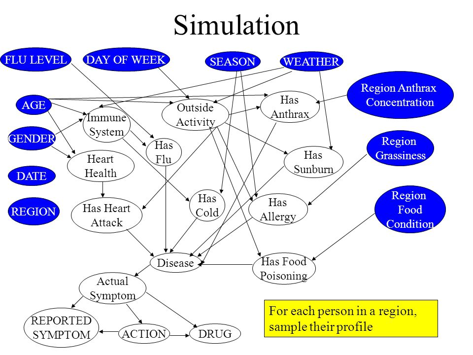 Simulation DATE DAY OF WEEK SEASON FLU LEVEL WEATHER REGION AGE GENDER Region Grassiness Region Anthrax Concentration Region Food Condition Immune System Outside Activity Has Anthrax Has Flu Has Allergy Has Heart Attack Has Sunburn Has Cold Heart Health Has Food Poisoning Disease ACTION Actual Symptom REPORTED SYMPTOM DRUG For each person in a region, sample their profile