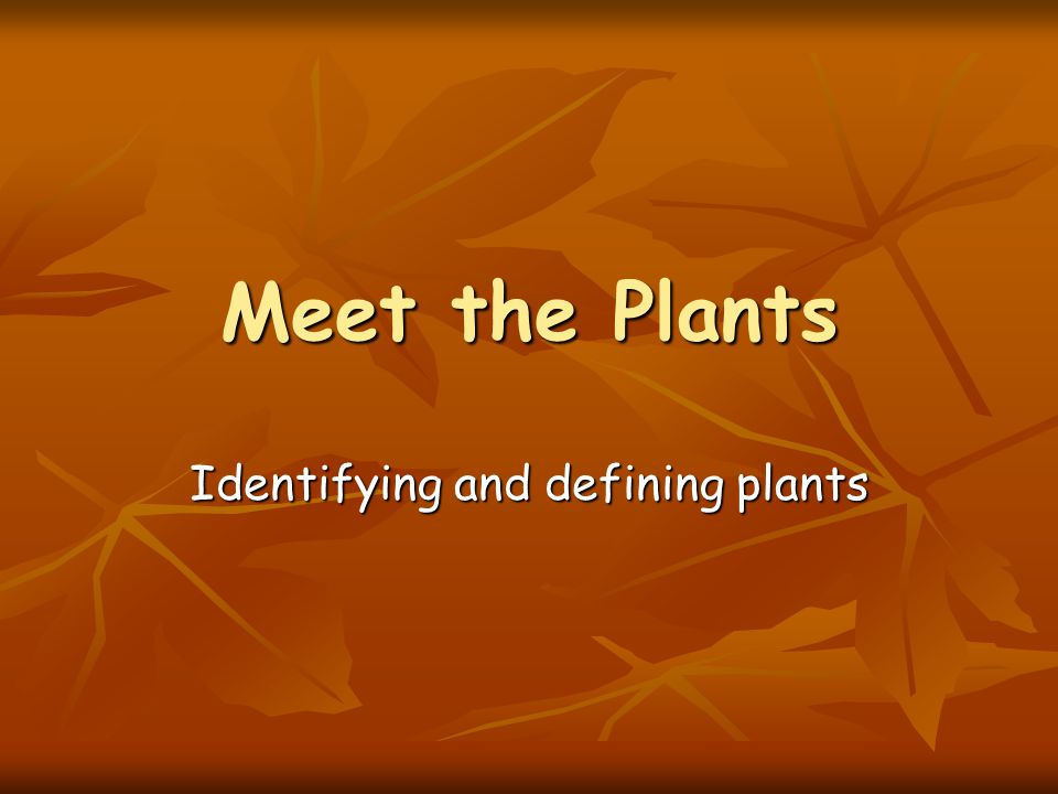 Meet the Plants Identifying and defining plants