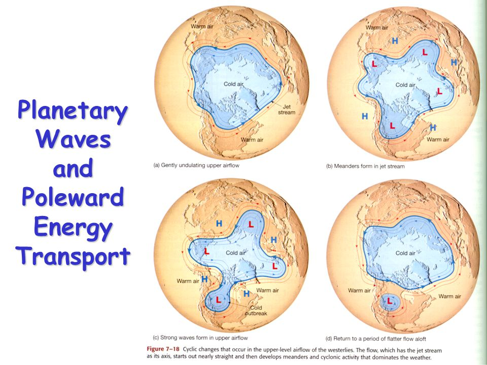 Planetary Waves and Poleward Energy Transport
