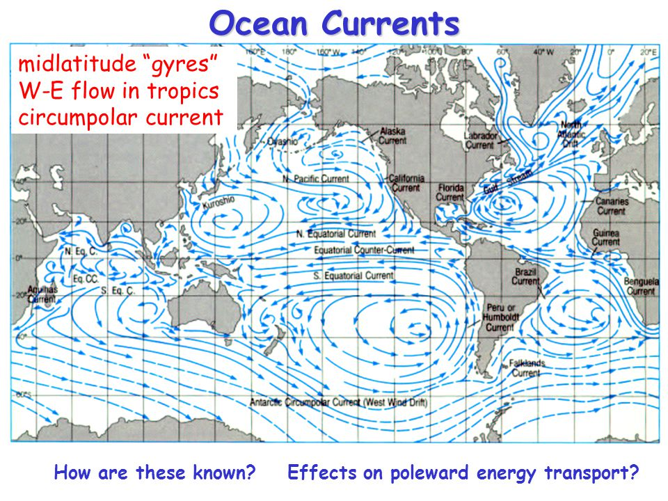 Ocean Currents midlatitude gyres W-E flow in tropics circumpolar current How are these known? Effects on poleward energy transport?
