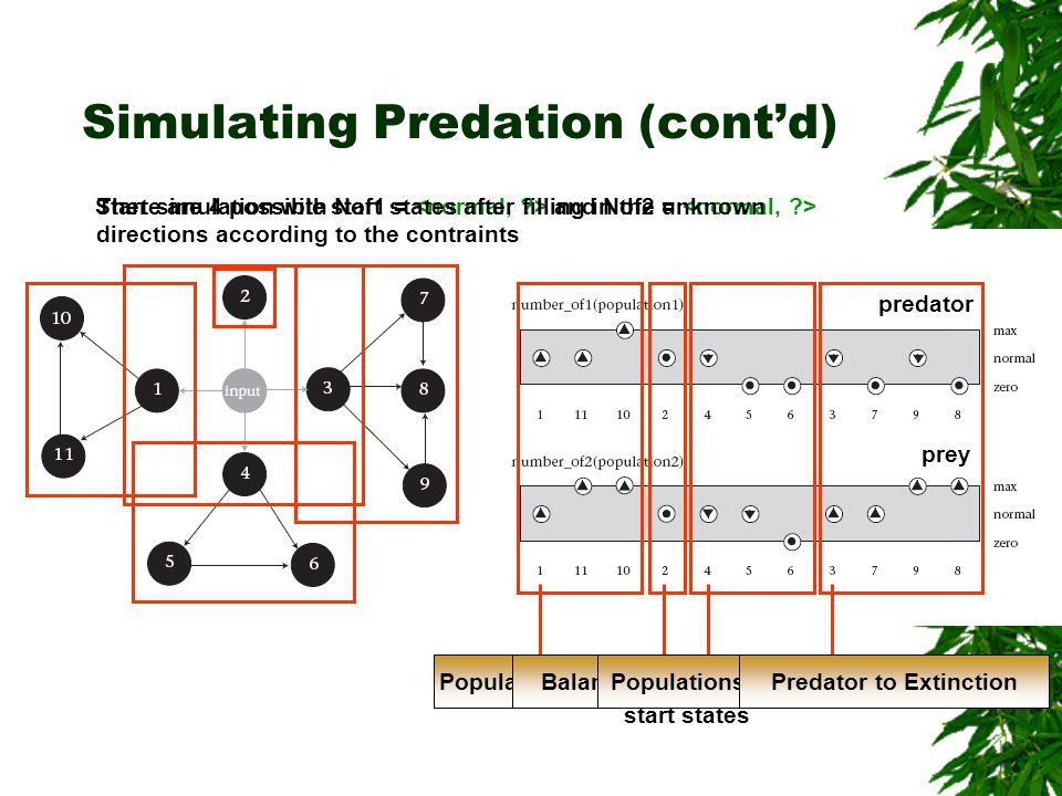 predator prey Simulating Predation (contd) Start simulation with Nof1 = and Nof2 = There are 4 possible start states after filling in the unknown dire