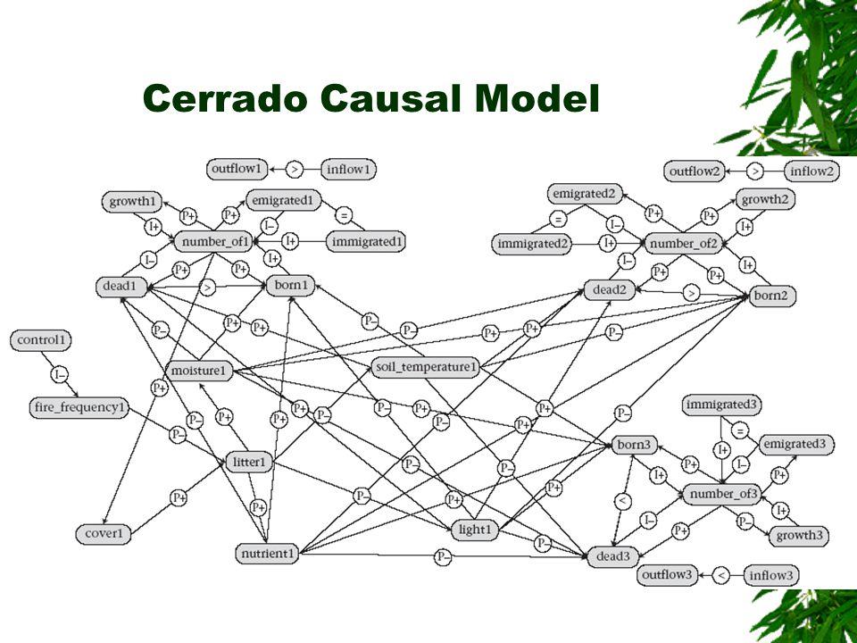 Cerrado Causal Model