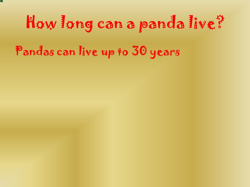 How long can a panda live? Pandas can live up to 30 years