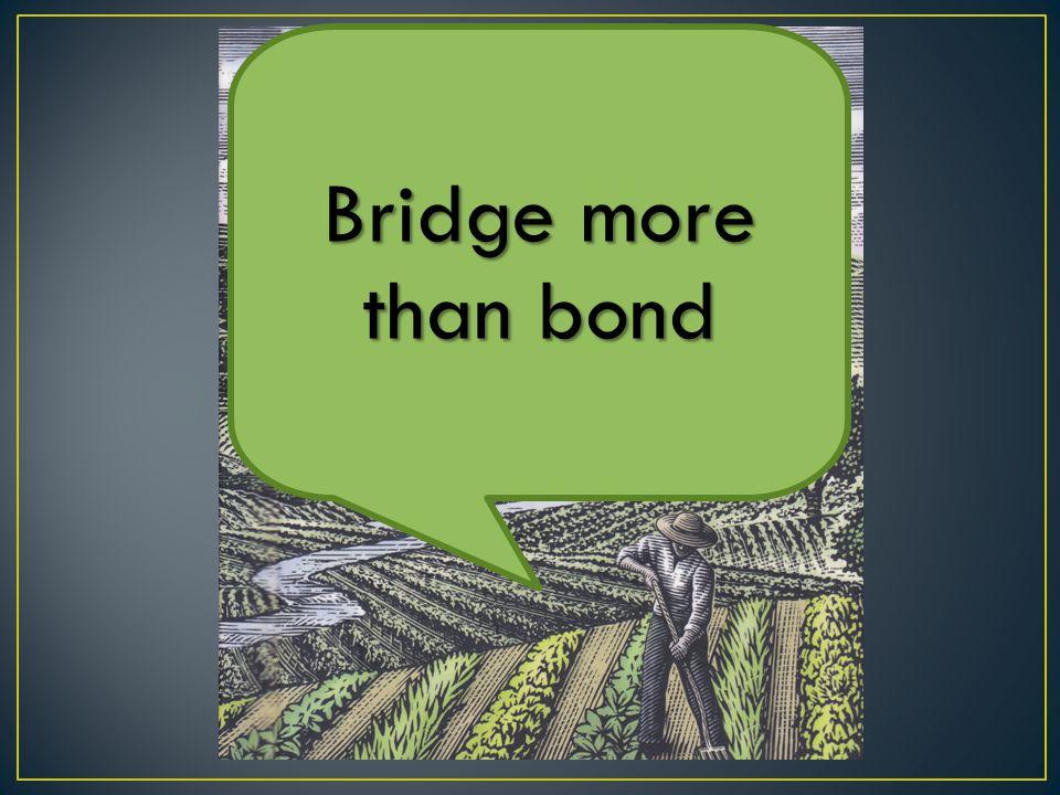 Bridge more than bond