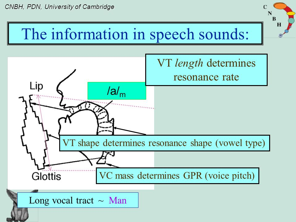 CNBH, PDN, University of Cambridge Family and Register in musical sounds The shape of the envelope/resonance largely determines the sound of the instrument family, or the family aspect of instrument perception.