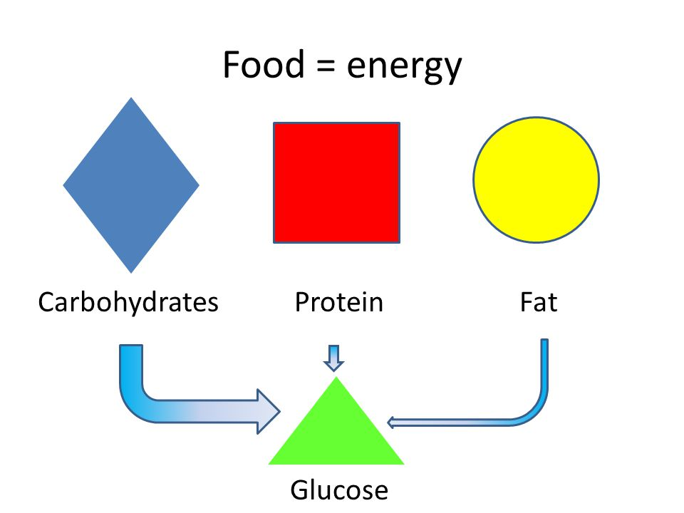 Food = energy CarbohydratesProteinFat Glucose